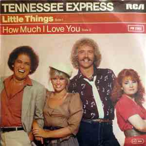 Tennessee Express - Little Things album download
