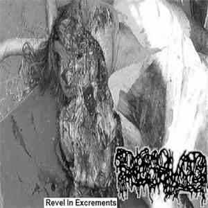 Dissolved  - Revel In Excrements album download